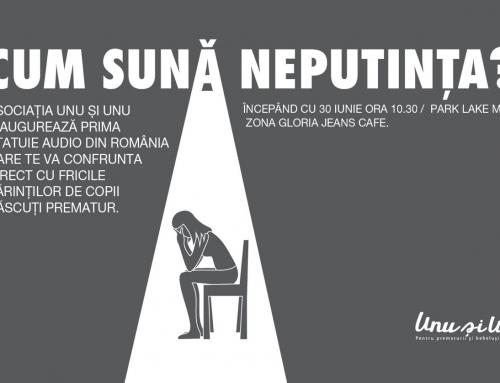 Prima Statuie Audio pentru parintii cu prematuri din Romania!